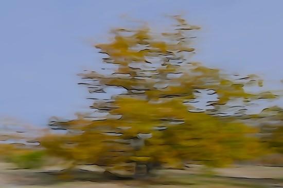 Ga294601-Impression de vitesse