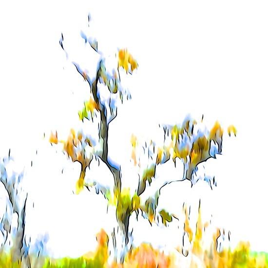 Ga294680-Touches de couleurs