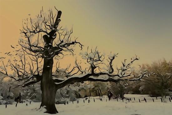 H1068193-Habit de neige