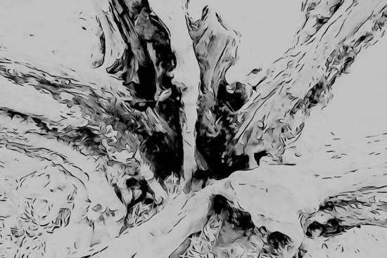 H1168957-Cratère