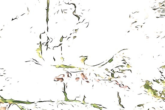 H8106446-Esquisse