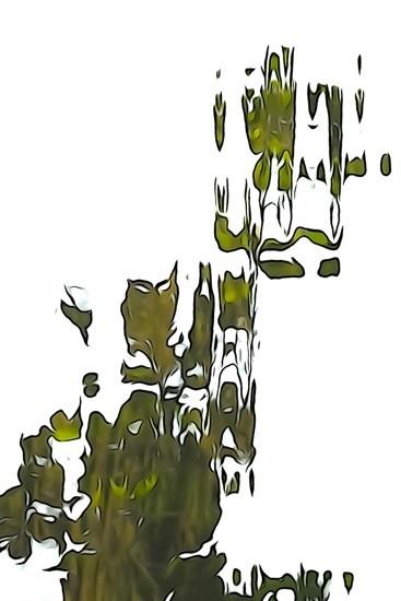 H8127034-Déco végétale