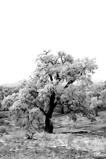H9028840-Le chêne en fleurs