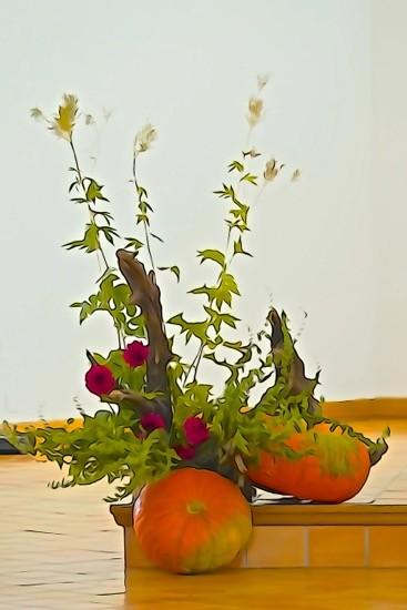 Ha020285-Potirons en fleurs