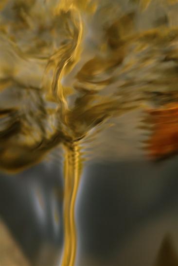 6A061431-Danseuse de Preljocaj